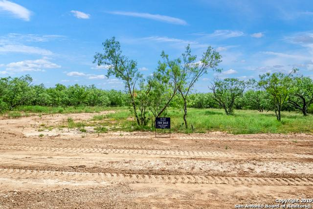 14662 Silesia Drive, St Hedwig, TX 78152 (MLS #1392385) :: River City Group