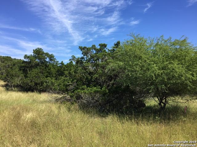 235 Pin Oak Trail, New Braunfels, TX 78132 (MLS #1392584) :: BHGRE HomeCity