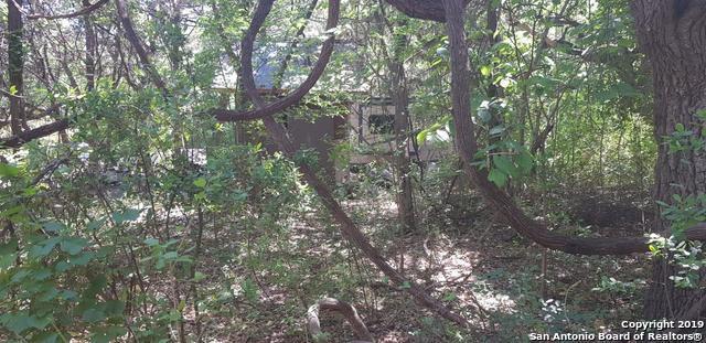 380 Antler Dr, Spring Branch, TX 78070 (MLS #1392852) :: NewHomePrograms.com LLC
