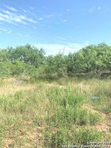 124 E Hidden Ranch Ct, Floresville, TX 78114 (MLS #1392888) :: Magnolia Realty