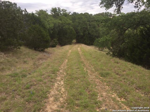 141 (LOT 1212) Alondra, Spring Branch, TX 78070 (MLS #1393040) :: NewHomePrograms.com LLC