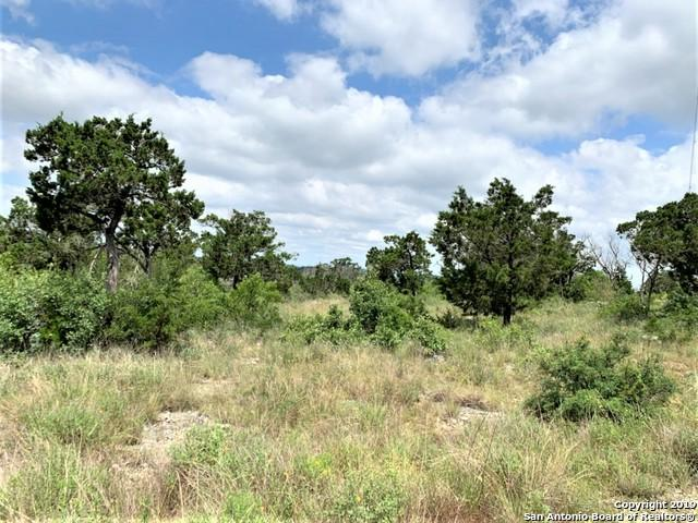 215 Pr 1717, Mico, TX 78056 (#1393058) :: The Perry Henderson Group at Berkshire Hathaway Texas Realty