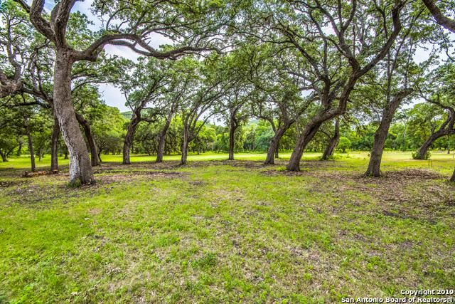 451 Canyon Forest, Helotes, TX 78023 (MLS #1393151) :: Neal & Neal Team