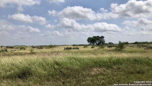 000 County Road 308 A, Charlotte, TX 78011 (MLS #1393161) :: Exquisite Properties, LLC
