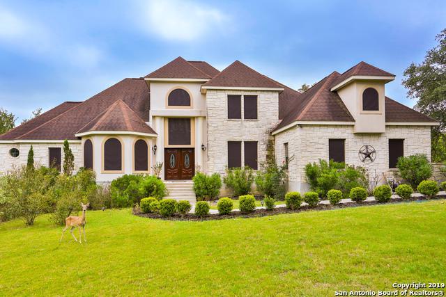 2279 Frontier, Spring Branch, TX 78070 (MLS #1393177) :: BHGRE HomeCity