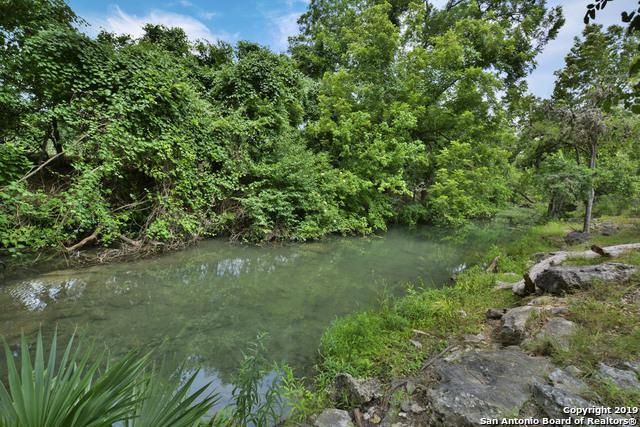 221 Rittimann Rd, Spring Branch, TX 78070 (MLS #1393204) :: Magnolia Realty