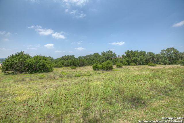 58 Granadilla, Boerne, TX 78006 (MLS #1393339) :: Alexis Weigand Real Estate Group