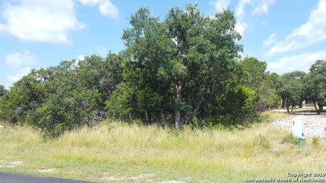 2508 Black Bear Dr, New Braunfels, TX 78132 (MLS #1393616) :: Neal & Neal Team