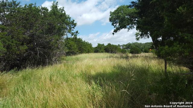 612 Haven Point Loop, New Braunfels, TX 78132 (MLS #1393618) :: Vivid Realty