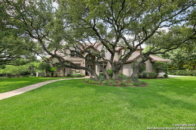 307 Cinnamon Oak, Shavano Park, TX 78230 (MLS #1393619) :: Neal & Neal Team