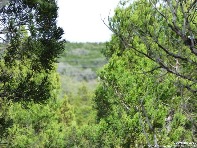 823 Valley Ridge, Canyon Lake, TX 78133 (MLS #1393667) :: Magnolia Realty