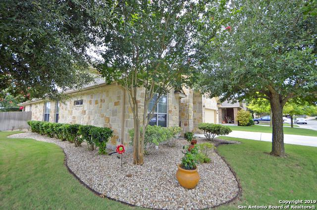 2146 Alton Loop, New Braunfels, TX 78130 (MLS #1393698) :: Neal & Neal Team