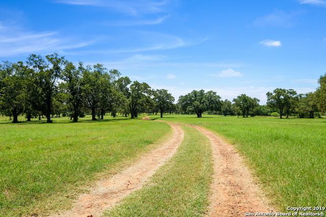 1166 County Road 259, Gonzales, TX 78629 (MLS #1393821) :: Niemeyer & Associates, REALTORS®