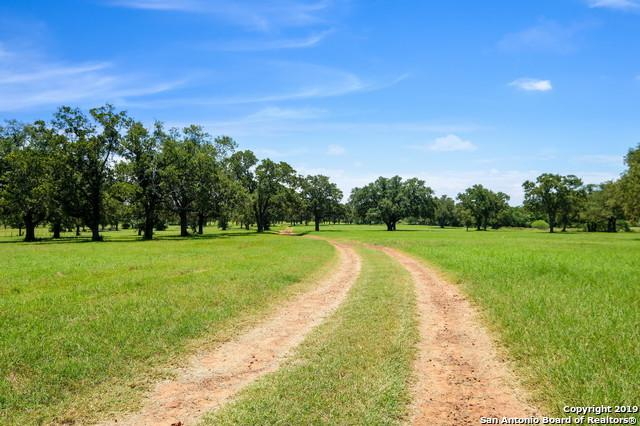 1166 County Road 259, Gonzales, TX 78629 (MLS #1393827) :: Alexis Weigand Real Estate Group