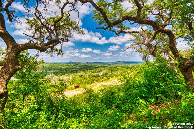 189 Table Rock, Helotes, TX 78023 (MLS #1393978) :: Alexis Weigand Real Estate Group