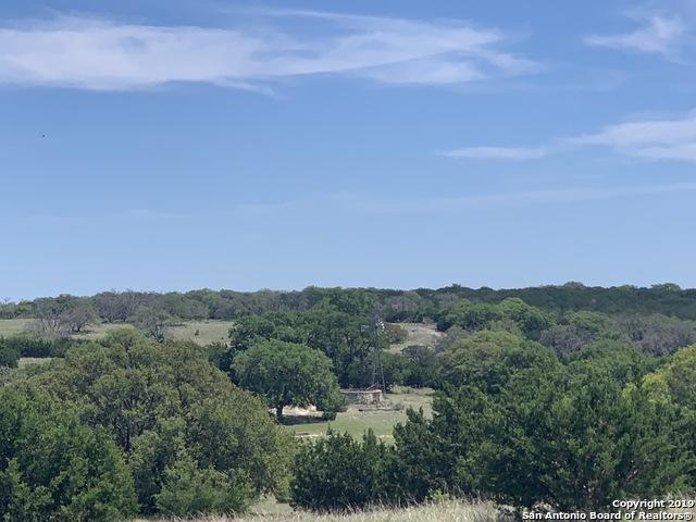 NA Duderstadt, Harper, TX 78631 (MLS #1394426) :: BHGRE HomeCity