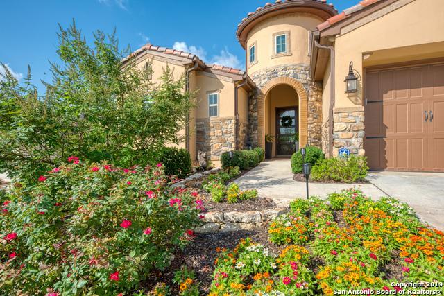 22903 Entiempo, San Antonio, TX 78261 (MLS #1394607) :: The Mullen Group | RE/MAX Access