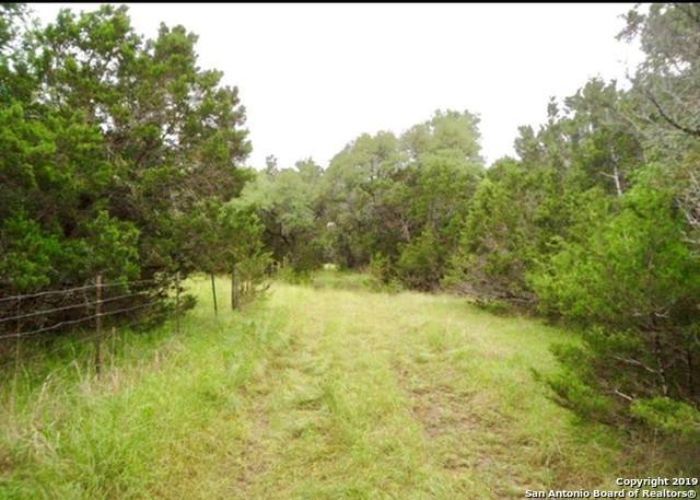 1285 Hidden Oaks Dr, Bulverde, TX 78163 (MLS #1394671) :: BHGRE HomeCity
