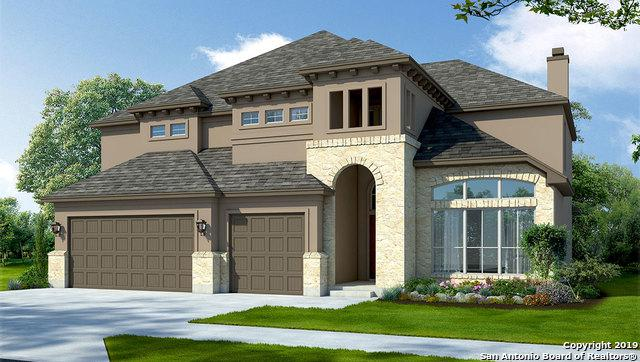 225 Wexford, Cibolo, TX 78108 (MLS #1395447) :: BHGRE HomeCity