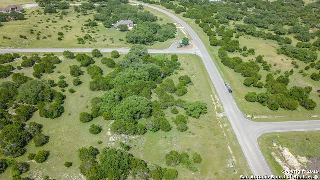 1125 Cordova Bend, Canyon Lake, TX 78133 (MLS #1395458) :: Neal & Neal Team