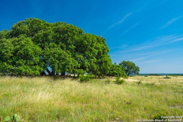3814 Rr 3235, Rocksprings, TX 78880 (MLS #1395703) :: The Mullen Group | RE/MAX Access