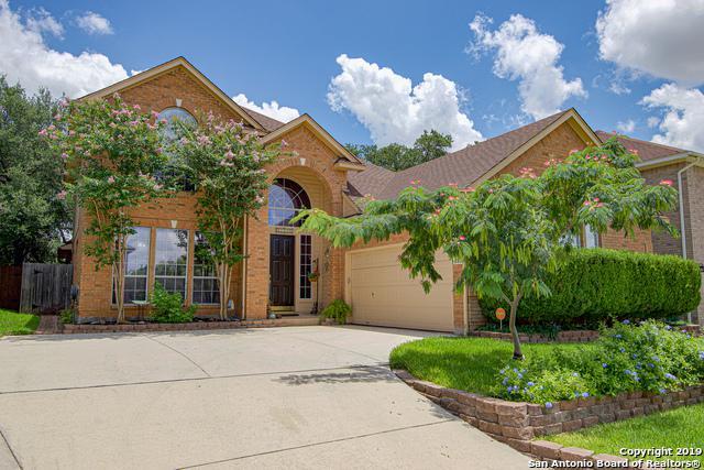 21738 Luisa, San Antonio, TX 78259 (MLS #1395820) :: BHGRE HomeCity