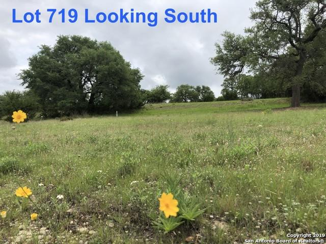 719 W Pat Dolan, Blanco, TX 78606 (MLS #1396169) :: Tom White Group