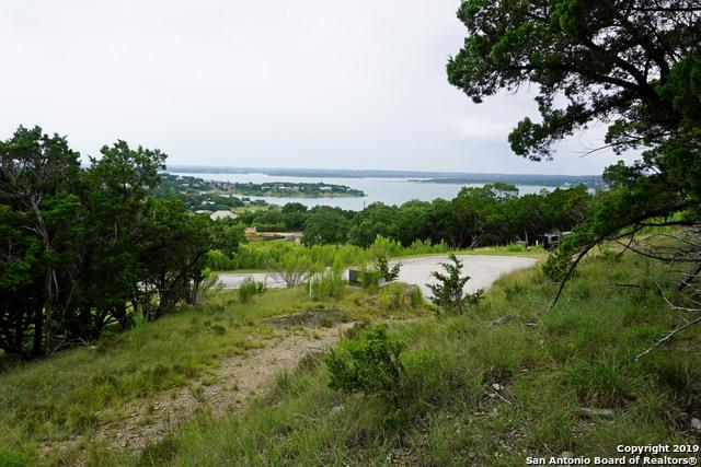 981 El Capitan Trail, Canyon Lake, TX 78133 (MLS #1396399) :: BHGRE HomeCity