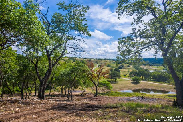 TBD Delaware Creek Rd, Blanco, TX 78606 (MLS #1396492) :: Alexis Weigand Real Estate Group