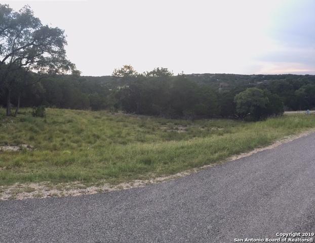 519 Shortcut Pass, Canyon Lake, TX 78133 (MLS #1396976) :: BHGRE HomeCity