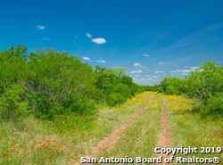 3 Cr 6753, Devine, TX 78016 (MLS #1397075) :: The Gradiz Group