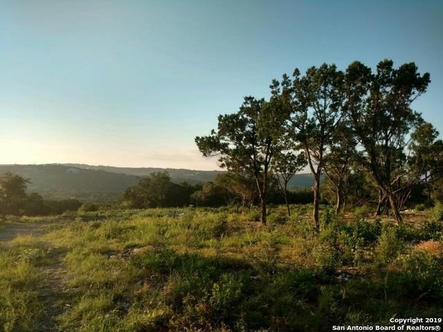 498 Pr 2777, Mico, TX 78056 (MLS #1397331) :: Exquisite Properties, LLC