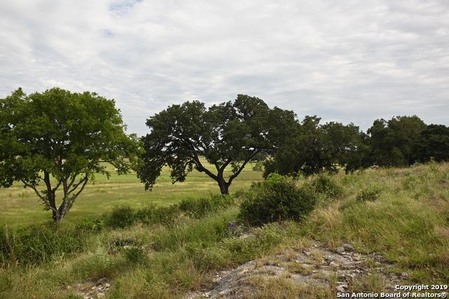 783 Pinto Canyon, Bandera, TX 78003 (MLS #1397435) :: Neal & Neal Team