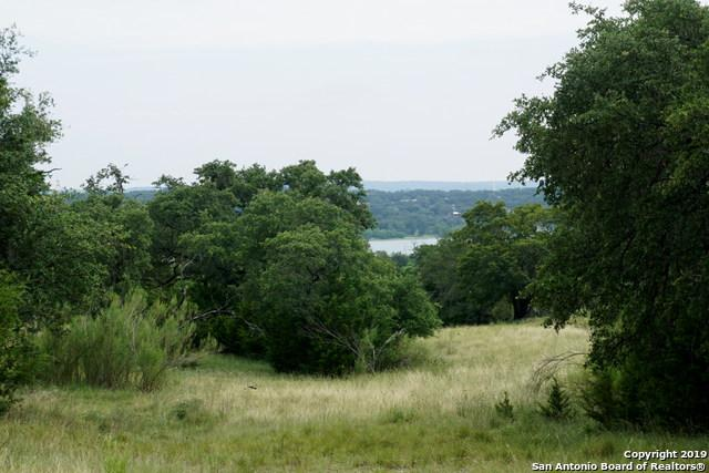 2122 Sierra Madre, Canyon Lake, TX 78133 (MLS #1397475) :: Carolina Garcia Real Estate Group