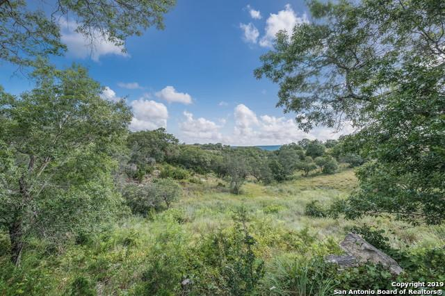 27 Coleman Springs Rd, Boerne, TX 78006 (MLS #1397578) :: The Mullen Group | RE/MAX Access