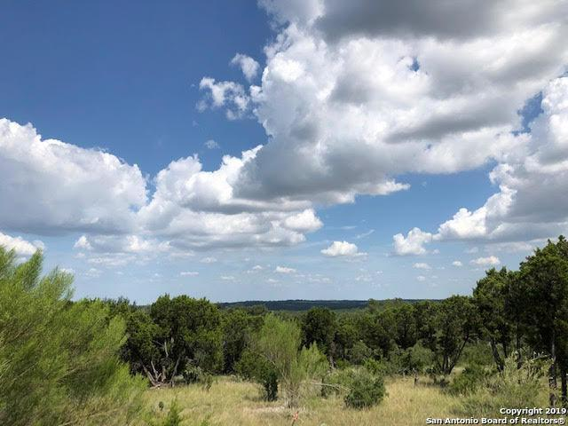 339 Valley Lodge, New Braunfels, TX 78132 (MLS #1397791) :: Vivid Realty