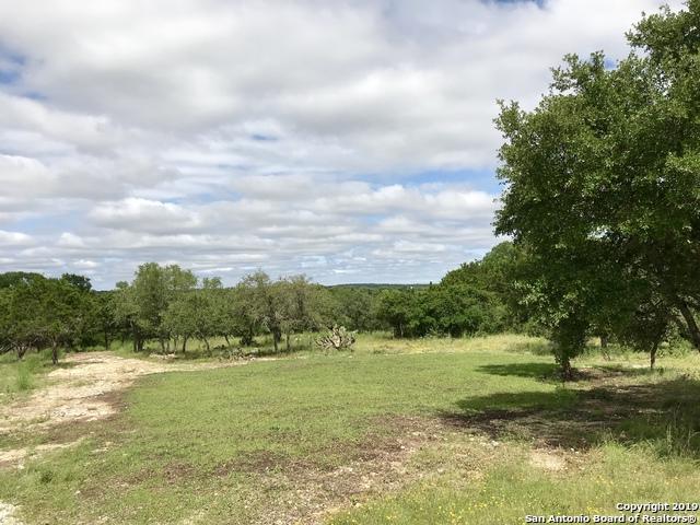 31411 Silver Spur Trail, Fair Oaks Ranch, TX 78015 (MLS #1397798) :: The Gradiz Group