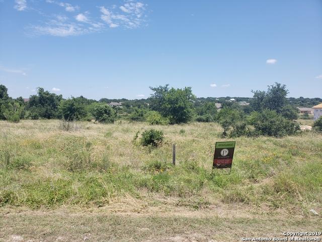 1228 Merlot, New Braunfels, TX 78132 (MLS #1397944) :: BHGRE HomeCity