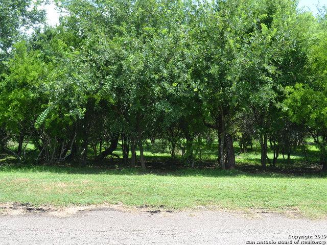 312 County Road 5632, Castroville, TX 78009 (MLS #1398190) :: Neal & Neal Team