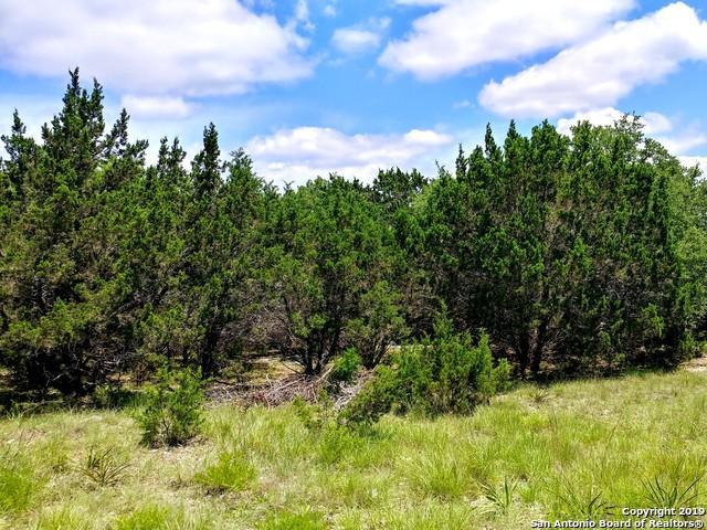 1150 Canyon Ranch Dr, Canyon Lake, TX 78133 (MLS #1398216) :: Neal & Neal Team