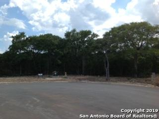 740 Lantana Trace, Spring Branch, TX 78070 (MLS #1398244) :: Niemeyer & Associates, REALTORS®