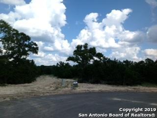 743 Lantana Trace, Spring Branch, TX 78070 (MLS #1398245) :: ForSaleSanAntonioHomes.com