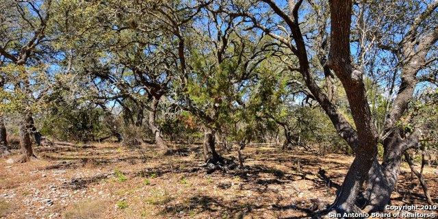 606 Alamo Rd, Fredericksburg, TX 78624 (MLS #1398439) :: The Castillo Group