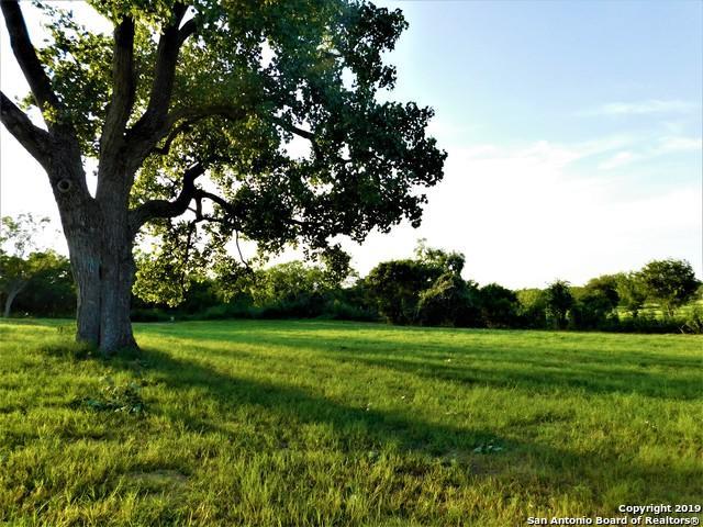 806 11th St, Sutherland Springs, TX 78161 (MLS #1398467) :: Neal & Neal Team