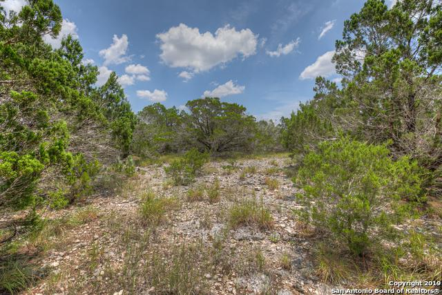1848 Rush Creek, Canyon Lake, TX 78133 (MLS #1398683) :: Neal & Neal Team