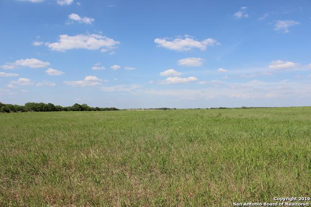 22 ACRE TRACT County Road 101 - Photo 1
