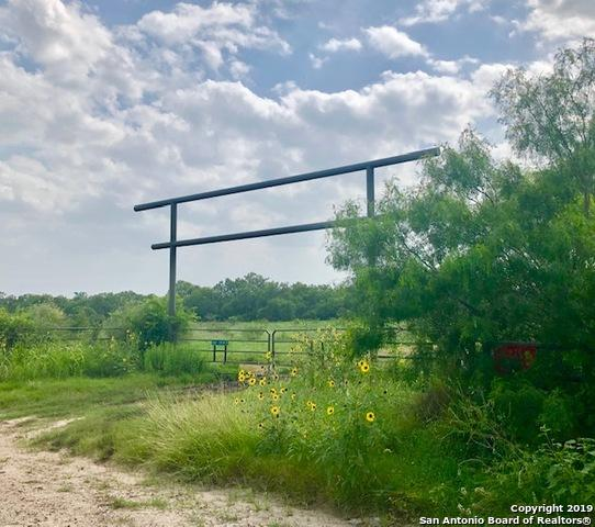 5401 County Road 2515, Moore, TX 78057 (MLS #1398791) :: Exquisite Properties, LLC