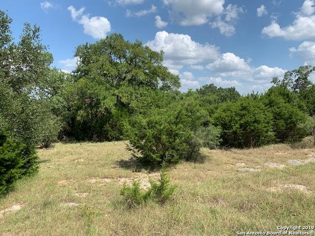 224 Santa Fe Trail, Boerne, TX 78006 (MLS #1399059) :: Tom White Group