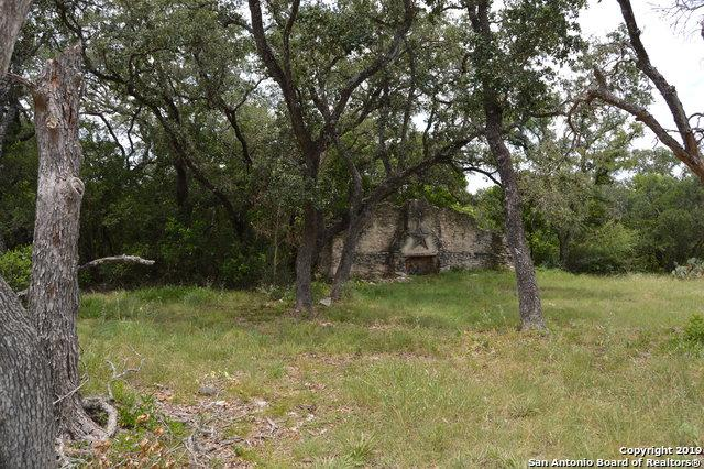 1195 Talley Rd, San Antonio, TX 78253 (MLS #1399117) :: Tom White Group