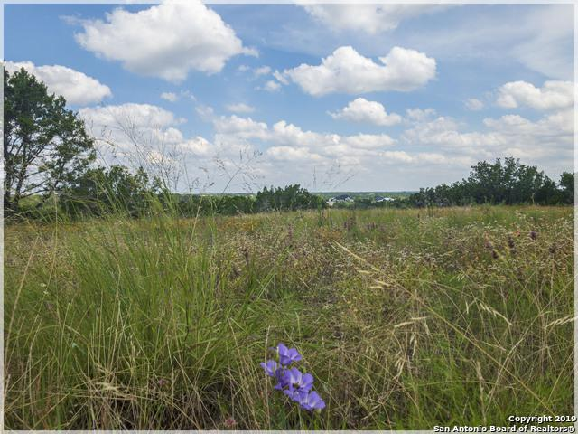 LOT 25 Rain Lily Court, Burnet, TX 78611 (MLS #1399378) :: Neal & Neal Team